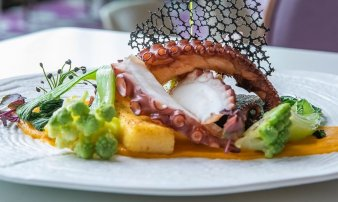 Chobotnice, polenta, kokosovo-mrkvové pyré, pak choi